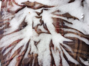 frozen dog bed