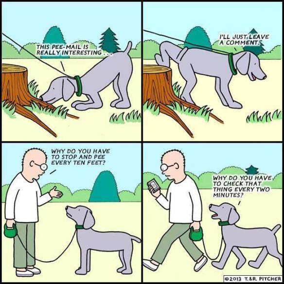 cartoon, checking email, pee-mail, smartphone, smartphone addiction, iphone, dog-walking, sniffing