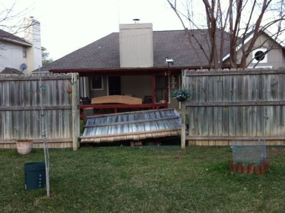 My fence blown over. photo by me.  :-)