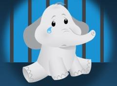 PETA circus elephant infographic