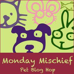 Monday Mischief Pet Bloghop