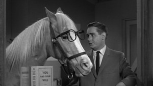 Mr Ed and Wilbur