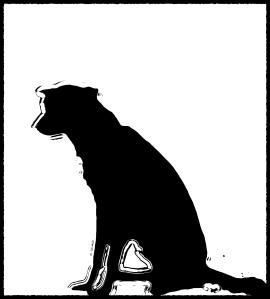 dog_bnw02
