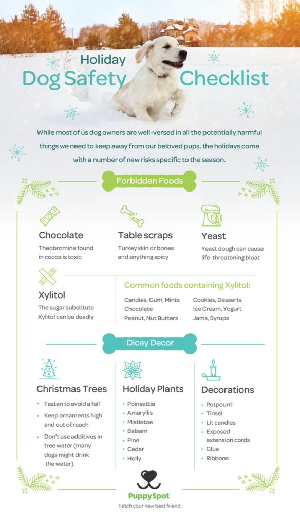 Holiday Safety Checklist for Dogs